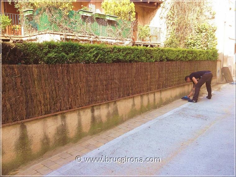 Bruc barcelona venta de rollos de bruc brezo para tejados - Bande de bruyere ...